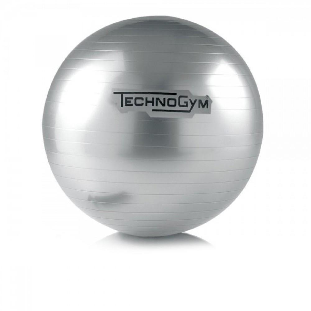 WELLNESS BALL™ TRAINING Technogym