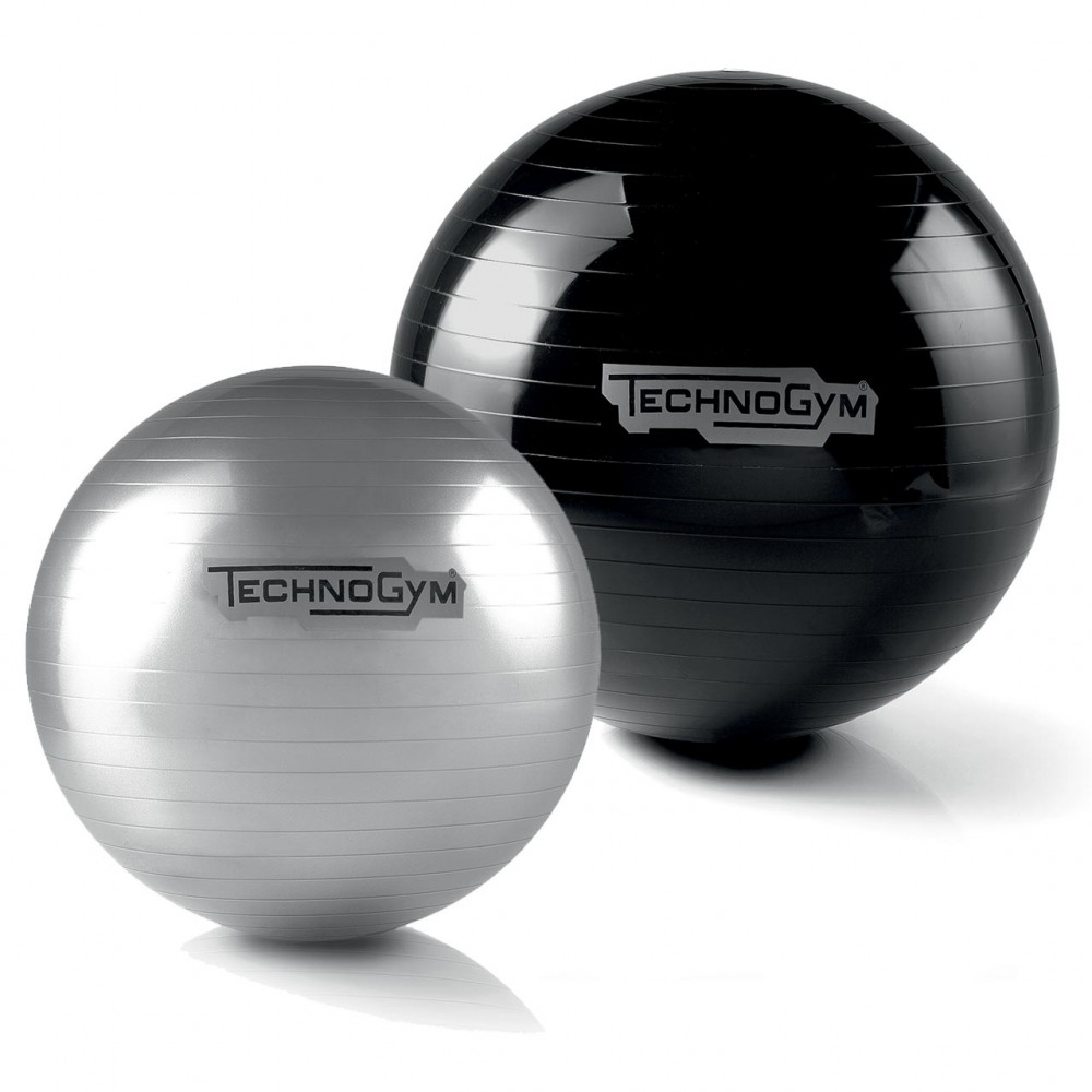Wellness Ball™ Training